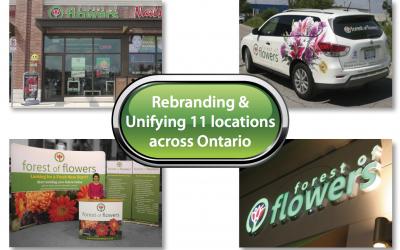 Rebranding Forest of Flowers